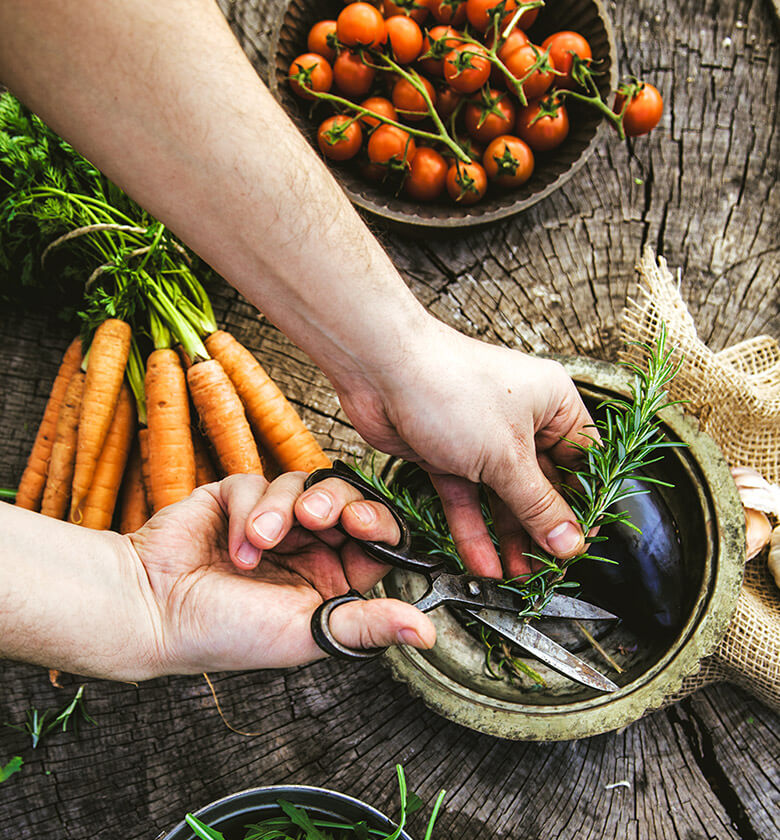 home_vegetables_contact1